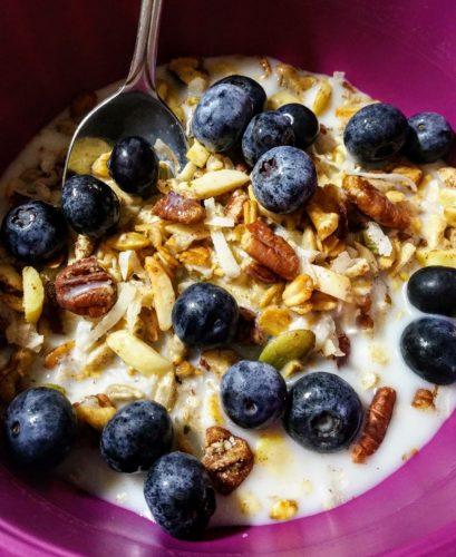 Low Carb Vegan Meusli Cereal